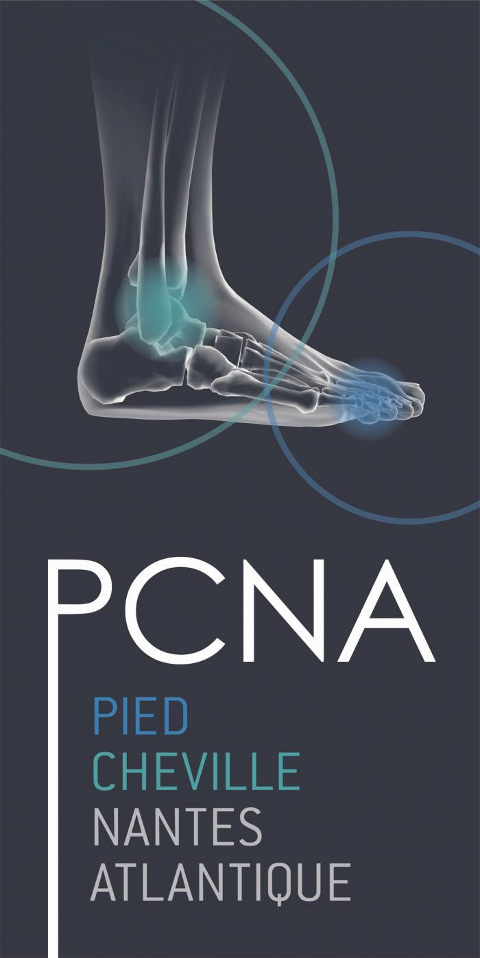 logo PCNA vertical sans les noms