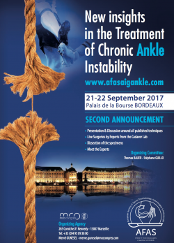 ANKLE INSTABILITY GROUP CONGRESS