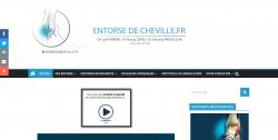 site internet : entorsedecheville.